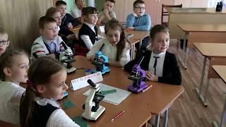 Открытый  урок  в 3 классе тема «Кожа»  21 школа  Барановичи  Манкевич Е.А.  Микульская О.А.