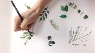 Green leaves watercolor illust…