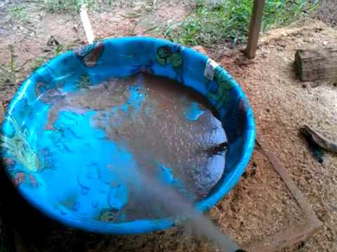 How i keep water for my ducks clean youtube - How do i keep ducks out of my swimming pool ...