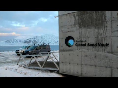 Svalbard Global Seed Vault celebrates tenth anniversary with special delivery