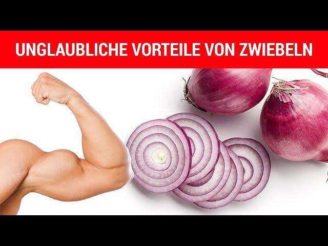 Warum bereits eine Zwiebel am Tag deine Gesundheit unterstu?tzt!