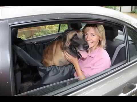 Автогамак OSSO Car (Фото) для перевозки собак