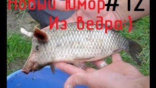 Новый Юмор! Приколы на рыбалке! Смешное видео!(Самое смешное видео на рыбалке! Всё что нас окружает! Юморное видео как рыбачат рыбаки :) Хоть улова нет зато..., 2016-04-04T13:11:39.000Z)