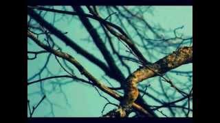 Lionel Richie - Stuck on You -Instrumental Karaoke