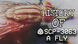 Baixar Hisotry Of SCP-3063 (SCP Containment Breach) - Ep.93