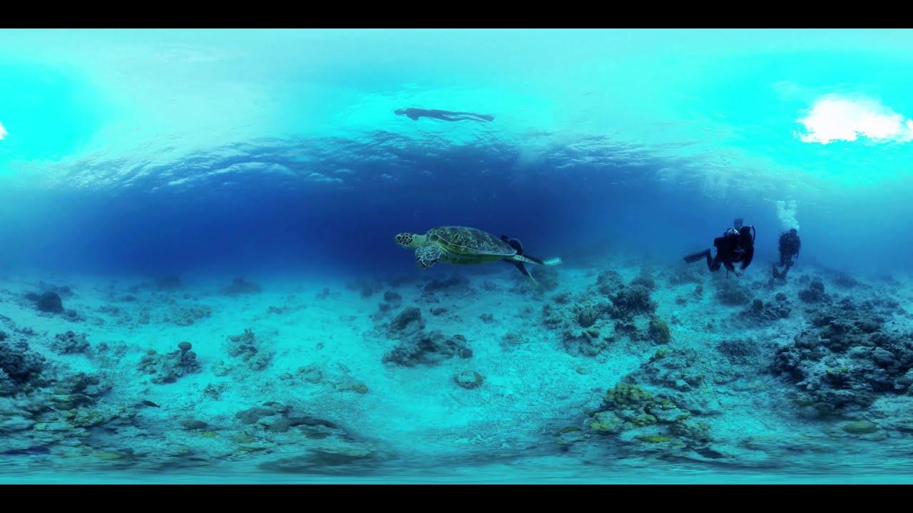 360 Video Underwater Okinawa 水中360ビデオ 360動画 Gopro X6 Youtube