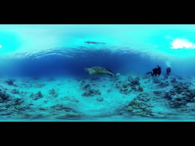 360 Video underwater OKINAWA 水中360ビデオ 360動画 GoPro x6