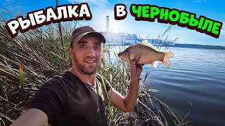 Рыбалка в Чернобыле Часть 2 Поймал и запек карася с белыми грибами в глине