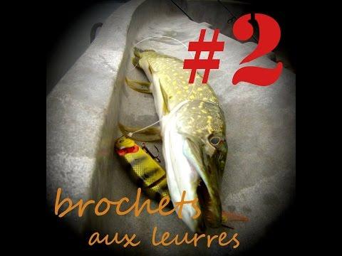 PECHE DU BROCHET & PERCHE Aux Leurres #2