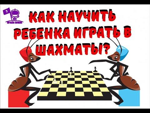 ��Как научить ребенка играть в шахматы? Как развить и сохранить его интерес к игре?
