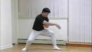 Drunken Style Kung Fu - 1996