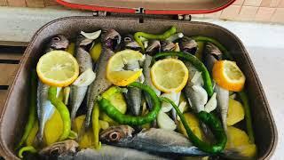 Öğrenci ev yemekleri/ Balık Buğulama/ Sardalya Balık Nasıl Buğulanır? Tülinin Mutfağı Şubat 2020