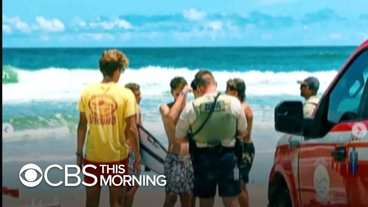 Third shark attack in Florida in three days