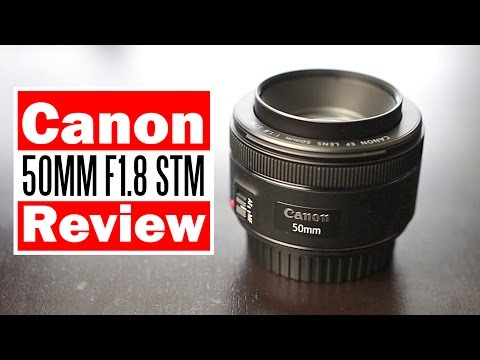Canon 50mm F1.8 STM Review & Comparison