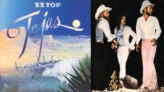 ZZ Top - She's A Heartbreaker