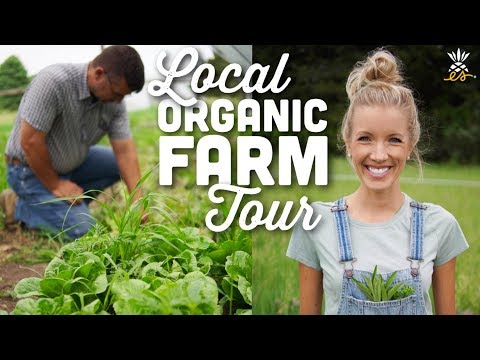 Local Organic Farm Tour | Midwest Plant-based Vegan Lifestyl