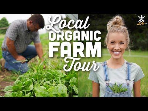 Local Organic Farm Tour   Midwest Plant-based Vegan Lifestyle