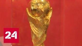 Футбольный Кубок мира ФИФА прибыл в Челябинск   Россия 24