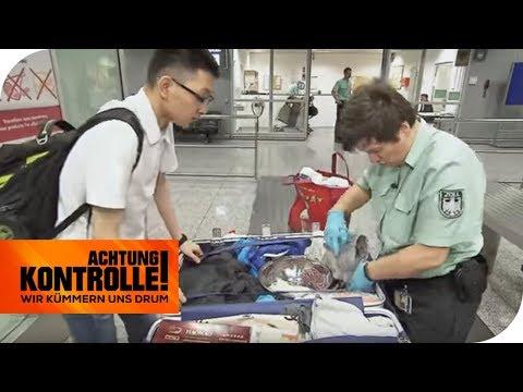 Fleisch aus China: Werden hier Krankheitserreger eingeflogen? | Achtung Kontrolle | kabel eins