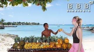 Особенности отдыха в Доминикане(Всё что нужно знать о поездке в Доминикану: безопасность в путешествии, сервис в отелях, экскурсии и развлеч..., 2015-11-18T14:23:45.000Z)