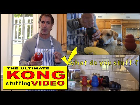 the-ultimate-kong-video---dog-treats---best-kong-fillers-and-stuffing