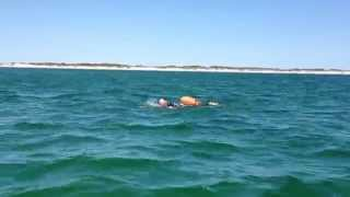 Swimming around Anholt, July 11, 2013. Part 2