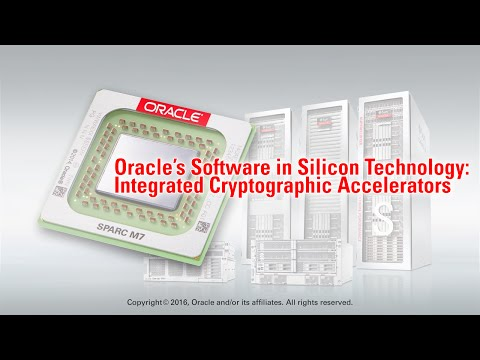 Oracle's Software in Silicon Technology: Integrated Cryptographic Accelerators