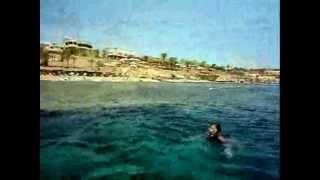 Egypt sunny holidays. Island in the sun 2012