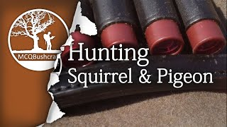 Hunting Grey Squirrel & Woodpigeon