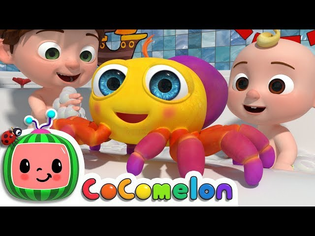 Itsy Bitsy Spider | CoCoMelon Nursery Rhymes & Kids Songs