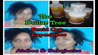 The Dollar Tree Braid Out Experience