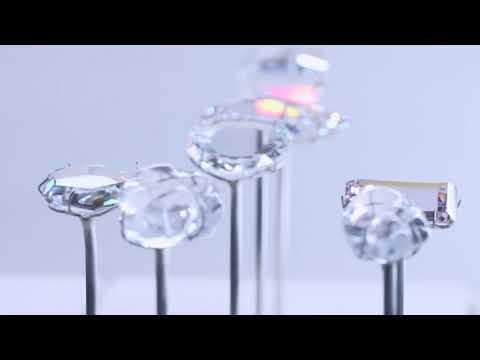 Le fabuleux destin des diamants de Tavernier - Exposition