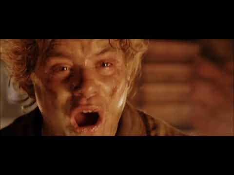 Frodo Tries To Destroy Justin Bieber