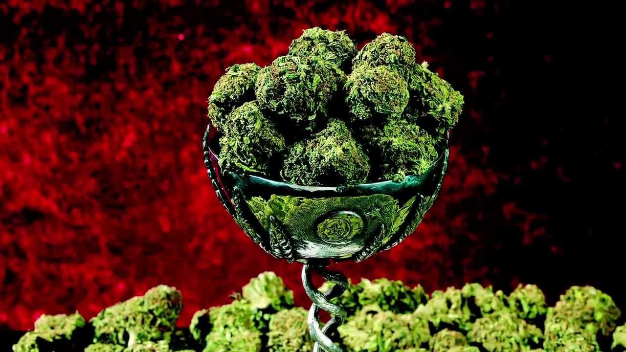 How to Use Anti-GMO Ordinances to Seize Marijuana Plants: A Guide