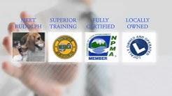 Bed Bugs Alaska | Anchorage Bed Bug Removal | Eagle River, Mat-Su & Kenai Bed Bug Company
