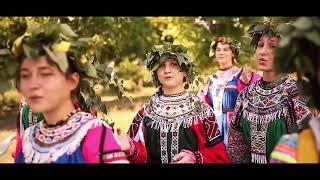 Свадебная песня Воронежской области «Виноград расцветает»