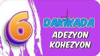 6dk'da ADEZYON KOHEZYON