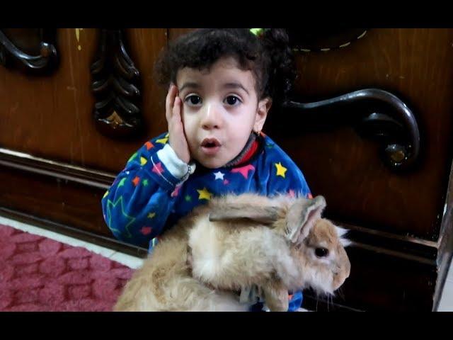 مريم لعبت مع الارنب وهي مريضة !!