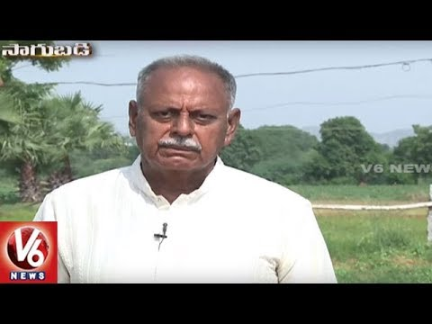 Success Story Of Organic Farmer Narsimha Rao | Warangal | Sagubadi | V6 News