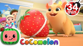 Lost Hamster + More Nursery Rhymes & Kids Songs  CoComelon