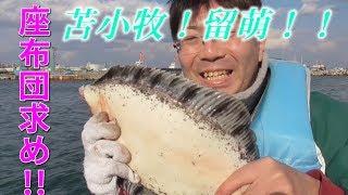 【釣り】50のカレイを求めて!苫小牧へ留萌へ!!増毛港でアブラコ