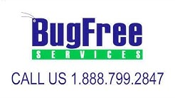 2014 Fort Myers Beach Bed Bug Heat Treatment