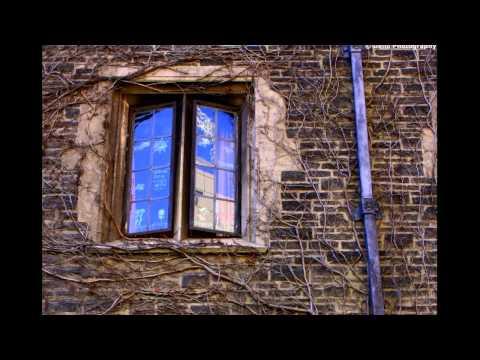 Street Photography: University of Toronto III