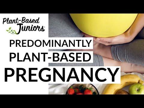 Plant-Based Pregnancy // Nutrition For Vegan + Vegetarian Moms-To-Be