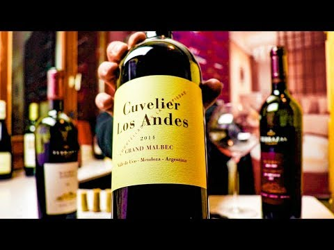Cuvelier Los Andes Grand Malbec   Wine Review