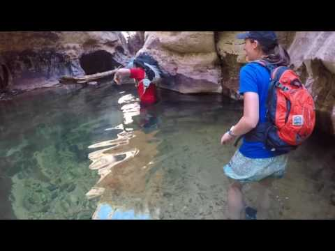 Subway Hike (Bottom Up) - Zion National Park