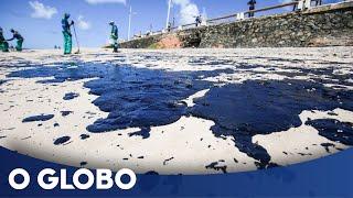 O tamanho do estrago do óleo vazado no litoral brasileiro