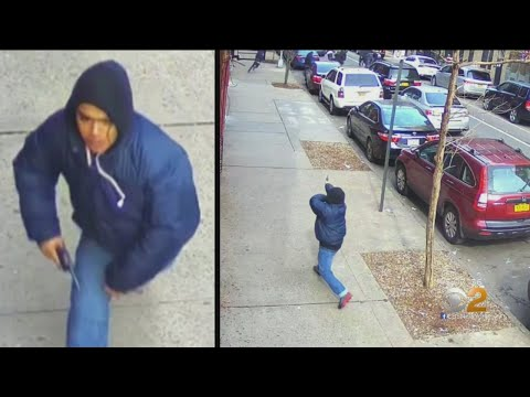 Gunman Opens Fire In Broad Daylight On Busy Bronx Sidewalk