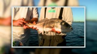 Fishing with Jersey Justin: Mosquito Lagoon Redfish with Capt  Jamie Glasner