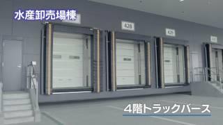 豊洲市場 施設竣工映像(ダイジェスト)